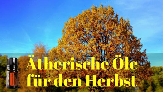 Ätherische Öle für den Herbst
